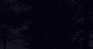 Black Background Texture